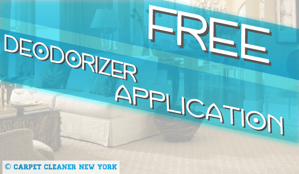 Get 2 Rooms Deep Cleaned and Get Free Deodorizer Applicarion