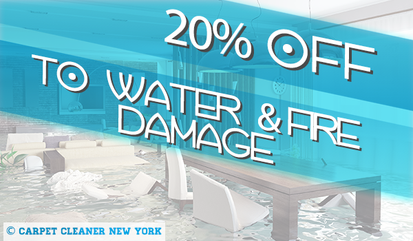 Water and Fire Damage Restoration